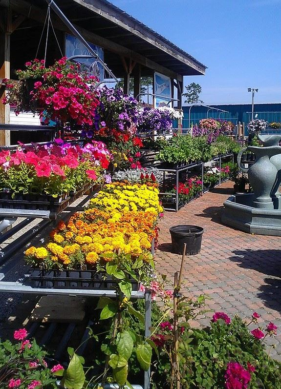 Retail Plant Nursery Full Service