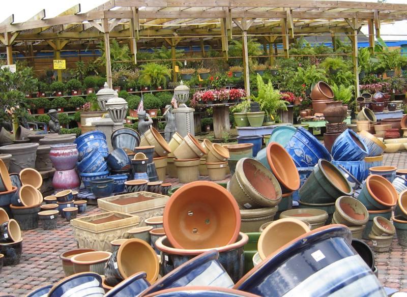 pots container garden